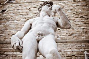 peculiaridades sobre o pênis